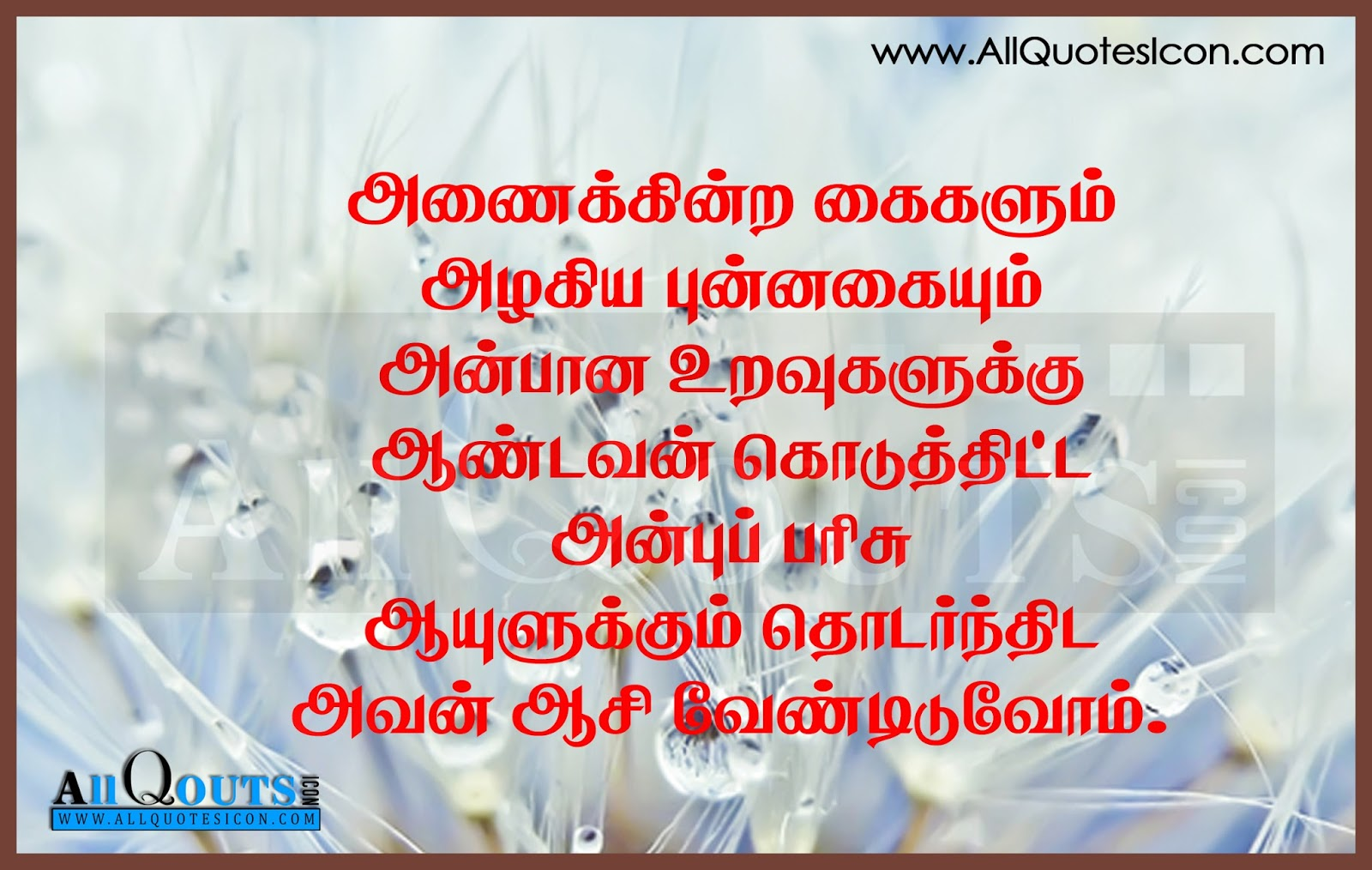 tamil friendship thoughts and sayings   allquotesicon