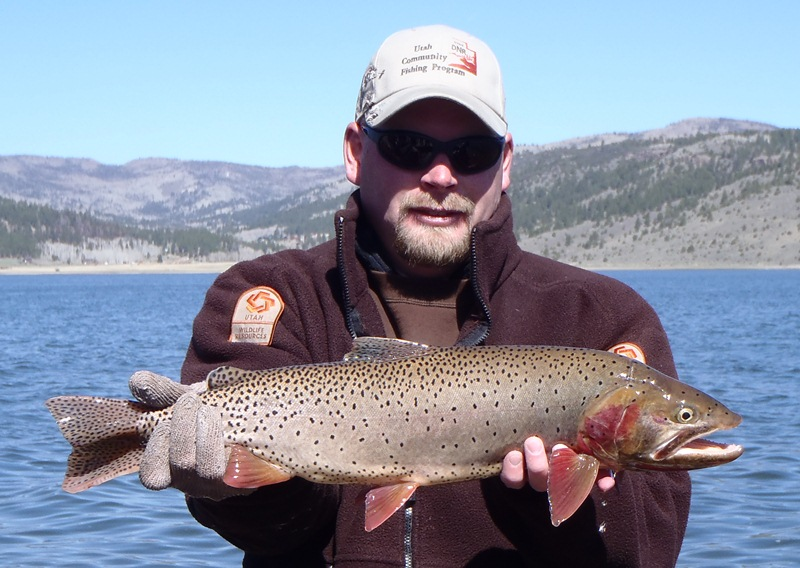 Southern utah hunt and fish panguitch lake gill net survey for Southern utah fishing report