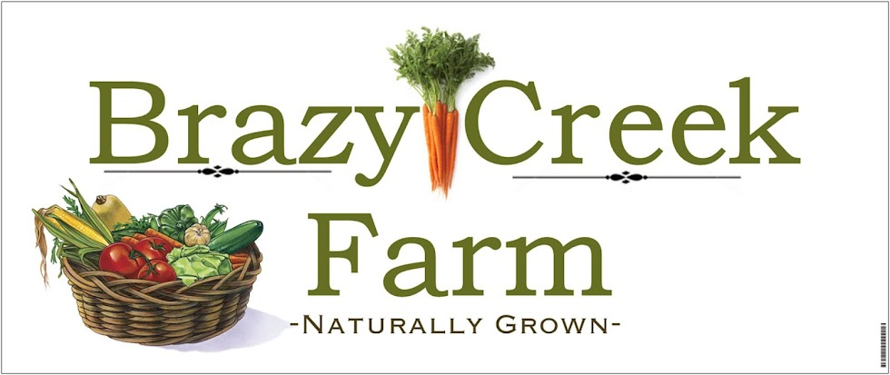 Brazy Creek Farm