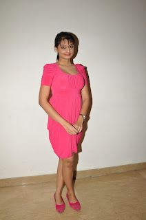 Nikitha Narayan  Pictures in Pink Dress at Pizza 2 Villa Audio Release Function    ~ Bollywood and South Indian Cinema Actress Exclusive Picture Galleries