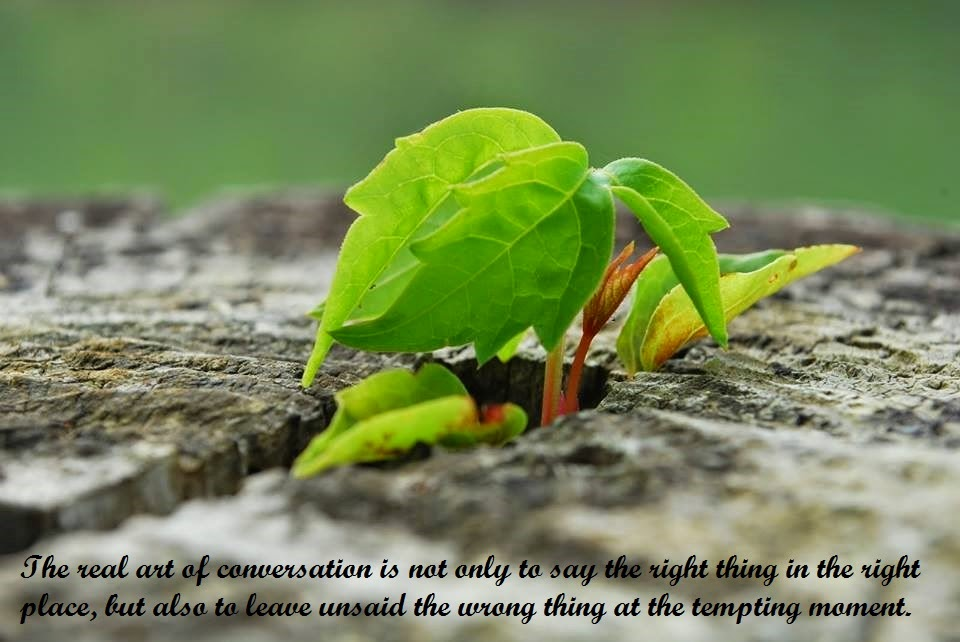 conversation quotes sayings wallpaper