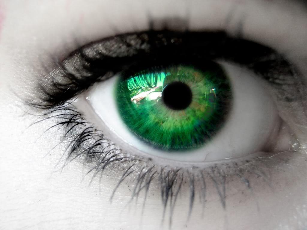 http://1.bp.blogspot.com/-ZnSkujsYsQA/TmUm4giEi-I/AAAAAAAAAMk/M6-0XCDZ_Qc/s1600/greeneyes.jpg
