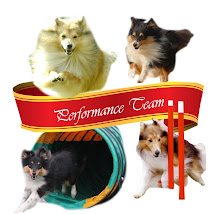 The Performance Team