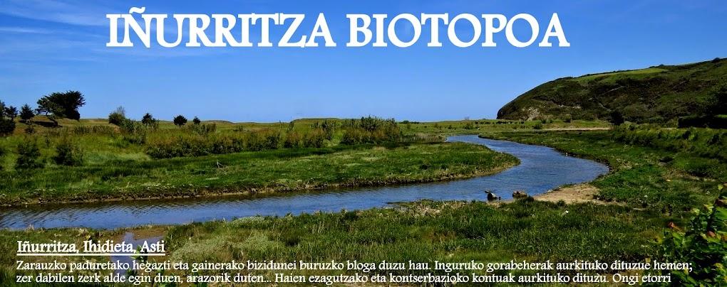 Iñurritza biotopoa