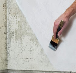 Hiperpinturas productos espec ficos contra la humedad - Microesferas ceramicas para pintura ...