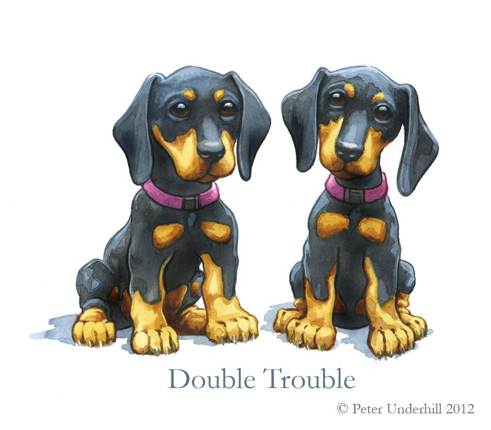 Illustration dust: Double Trouble