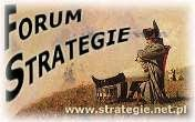 strategie.pl