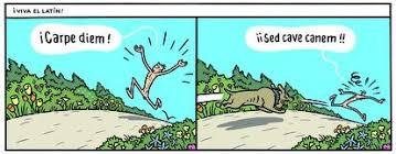 Trampantojo, por Max: ¡VIVA EL LATÍN!