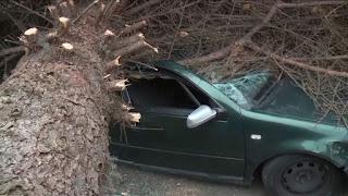 http://news.sky.com/story/1590553/powerful-storm-kills-three-in-washington