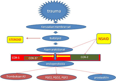 kortikosteroid pdf