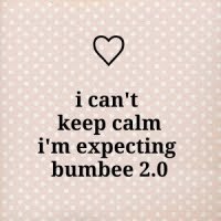 bumbee 2.0