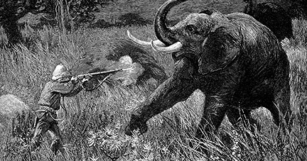 """imperialism in shooting an elephant Earley's idea can apply to orwell's essay """"shooting an elephant"""" the two things, the elephant and imperialism are the two things that orwell uses."""