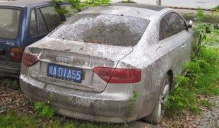 Audi A5 dicampakkan