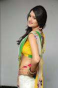 Kushi glamorous saree photos-thumbnail-4