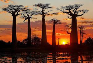 West of Madagascar