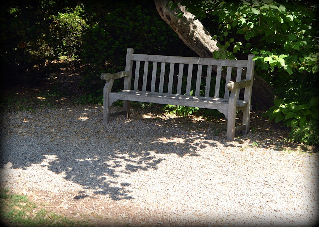 bench, shade, rest, ropes mansion garden, salem, massachusetts