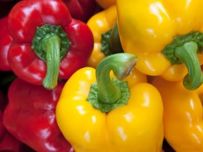 Lada benggala, capsicum, bell pepper