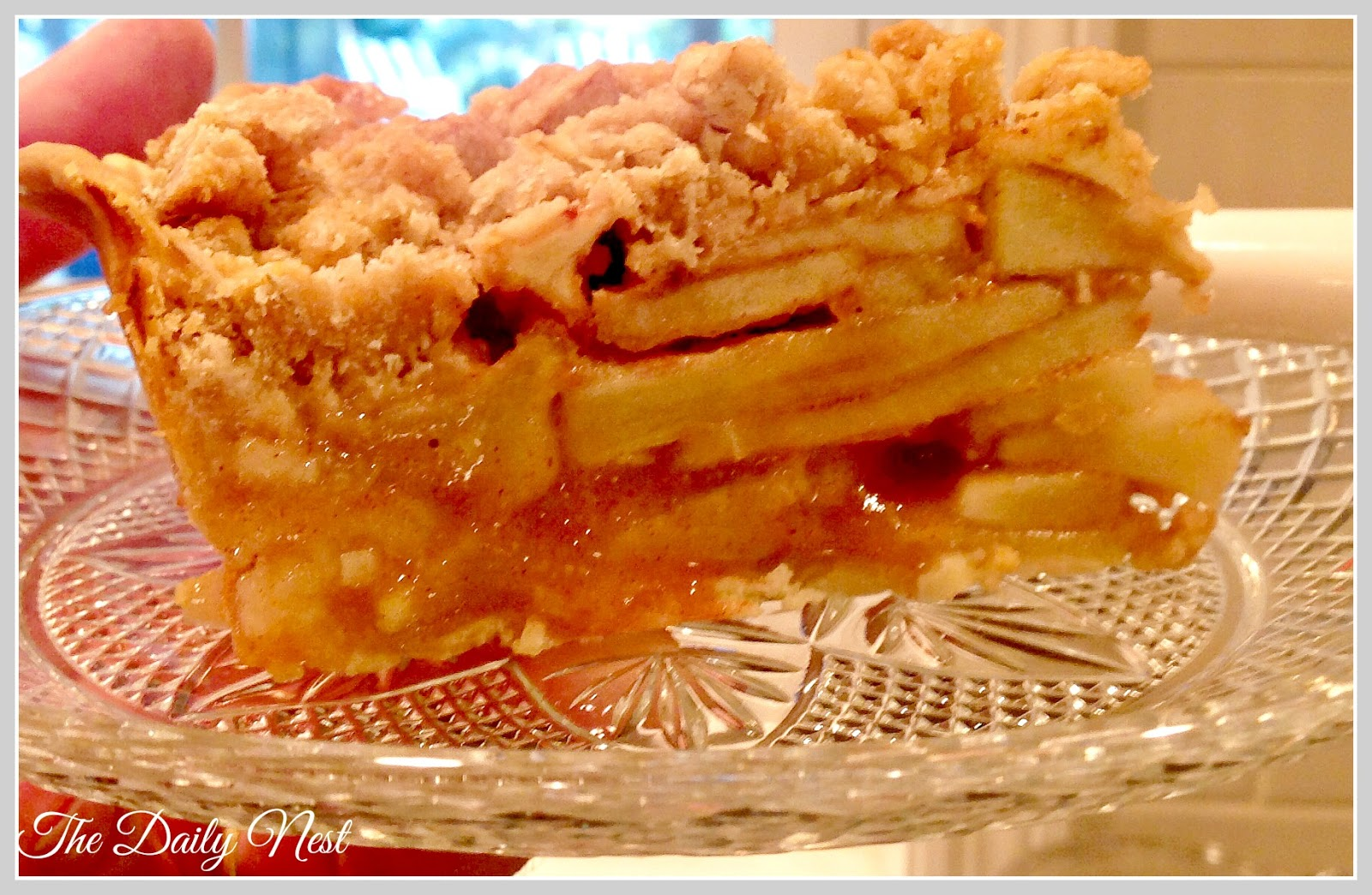 Mike's Favorite Dutch Apple Pie With Oatmeal Streusel Topping