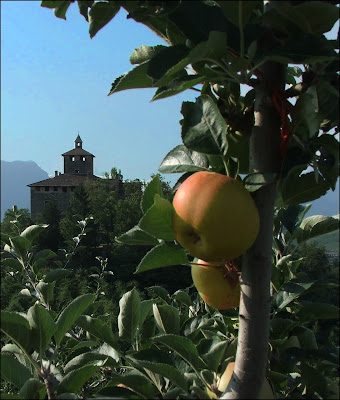 Pomaria 2013 – le mele DOP e i sapori della Val di Non