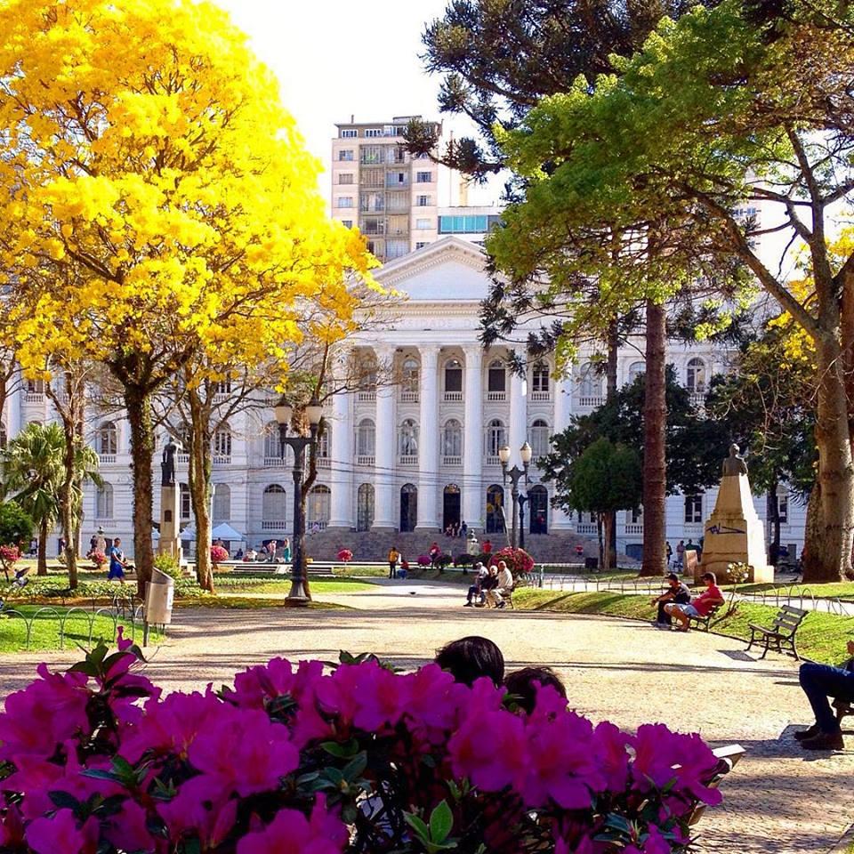 noemi: Curitiba/ Ip? Amarelo/ UFPR/ Poesia #curitiloverer