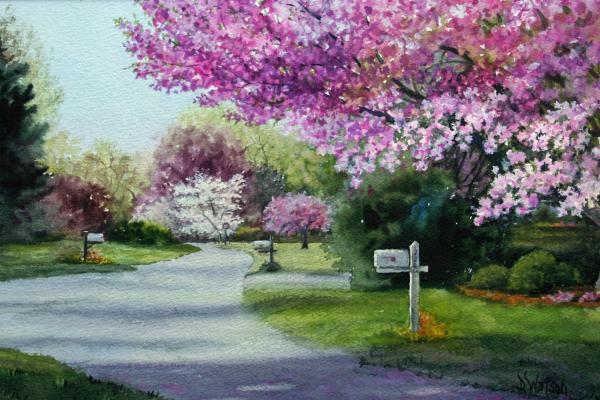 in garden beautiful spring