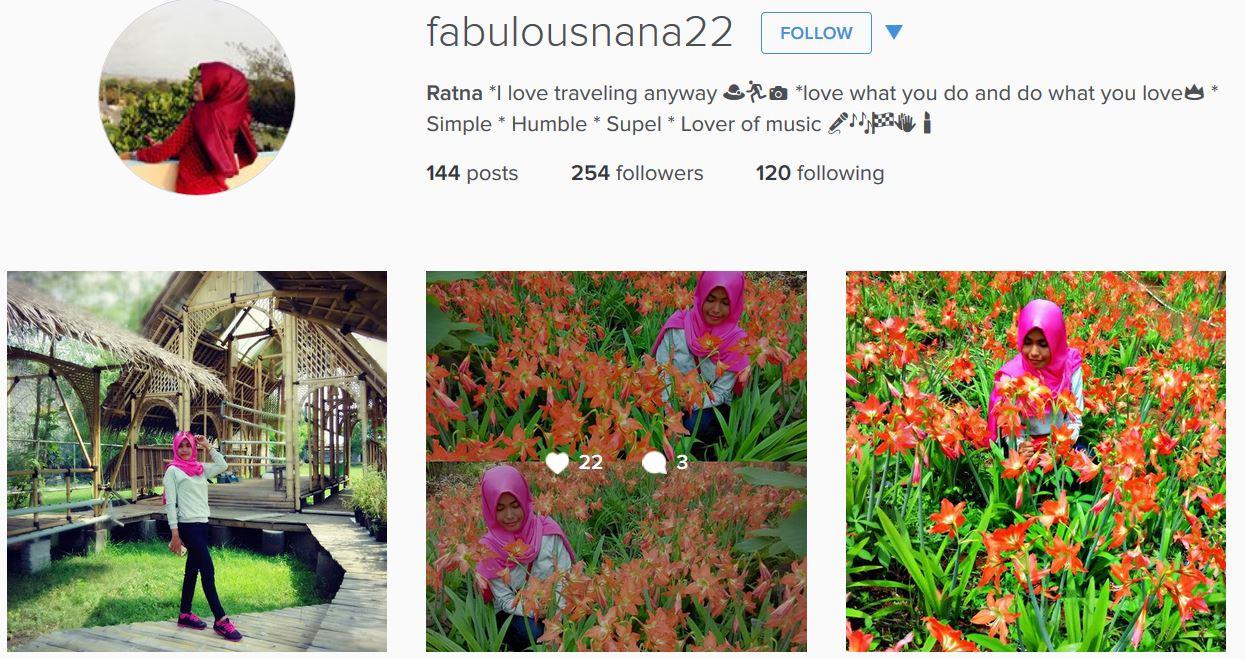 Foto Bunga Amarilis Yogyakarta Dirusak Remaja Alay