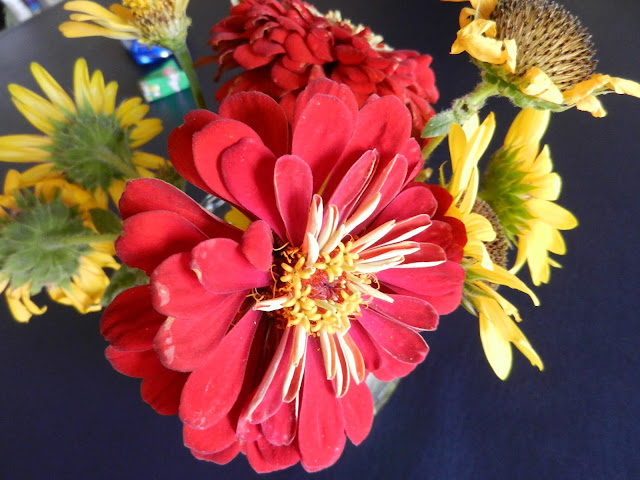red autumn flower arrangements