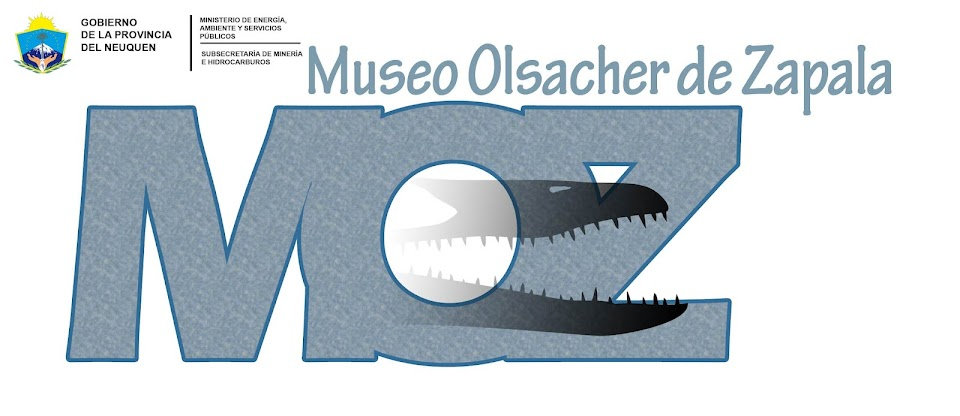 Museo Olsacher Zapala