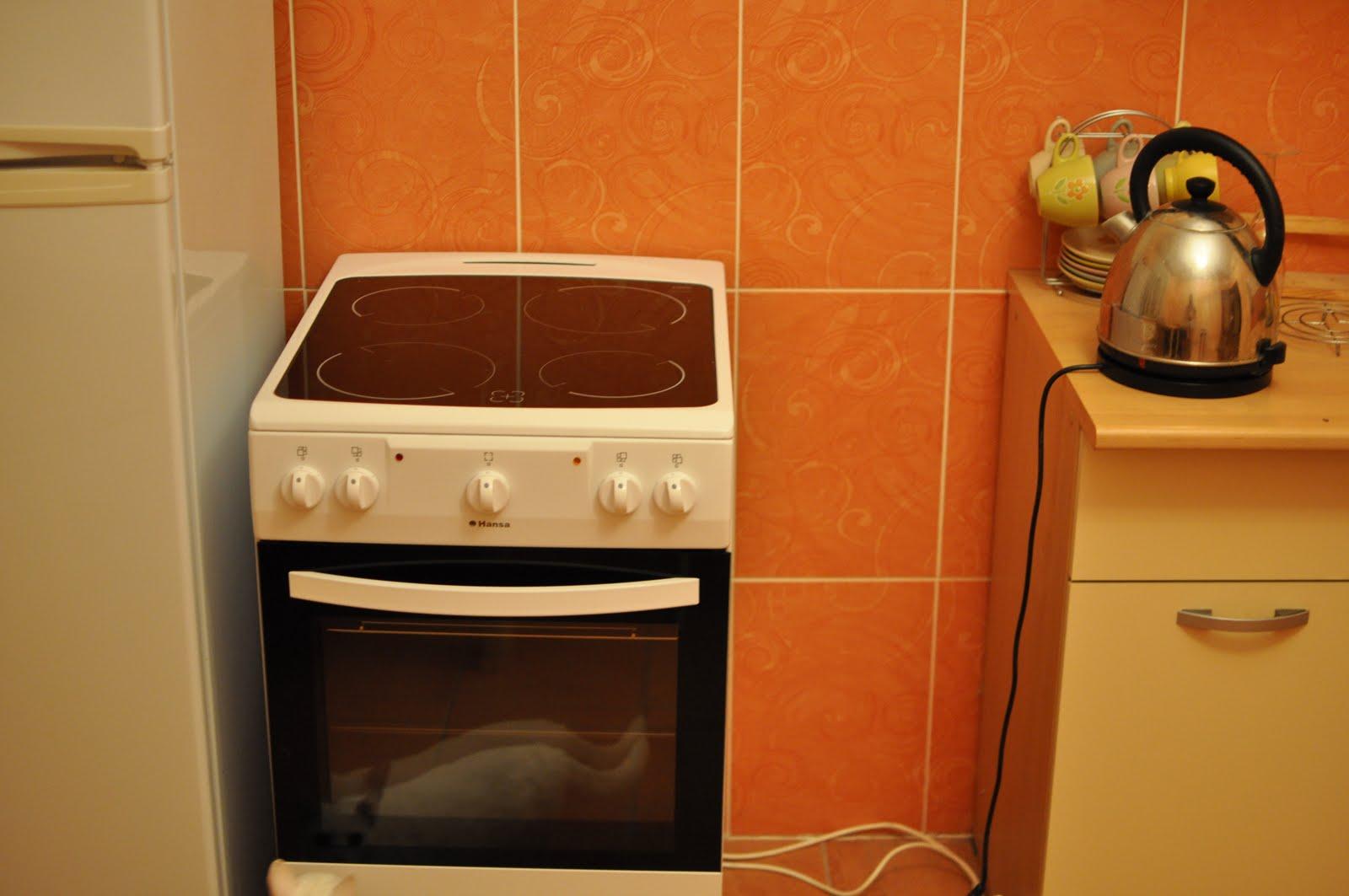 Ремонт плиты в москве