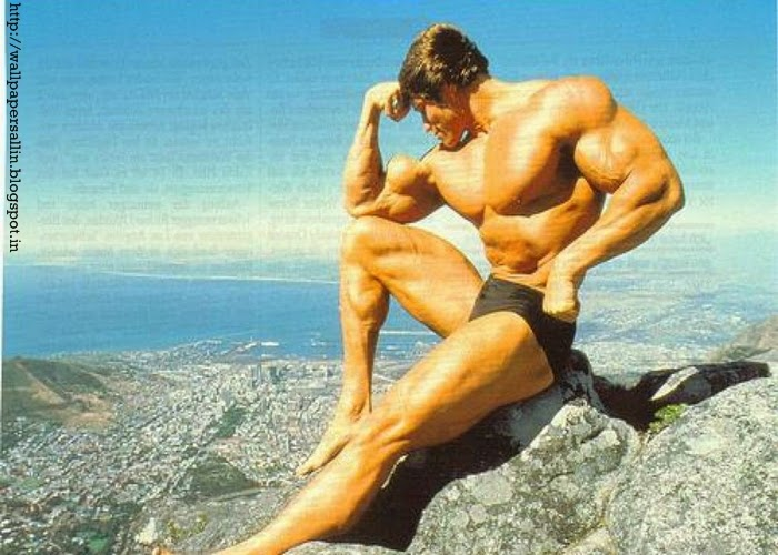 arnold images