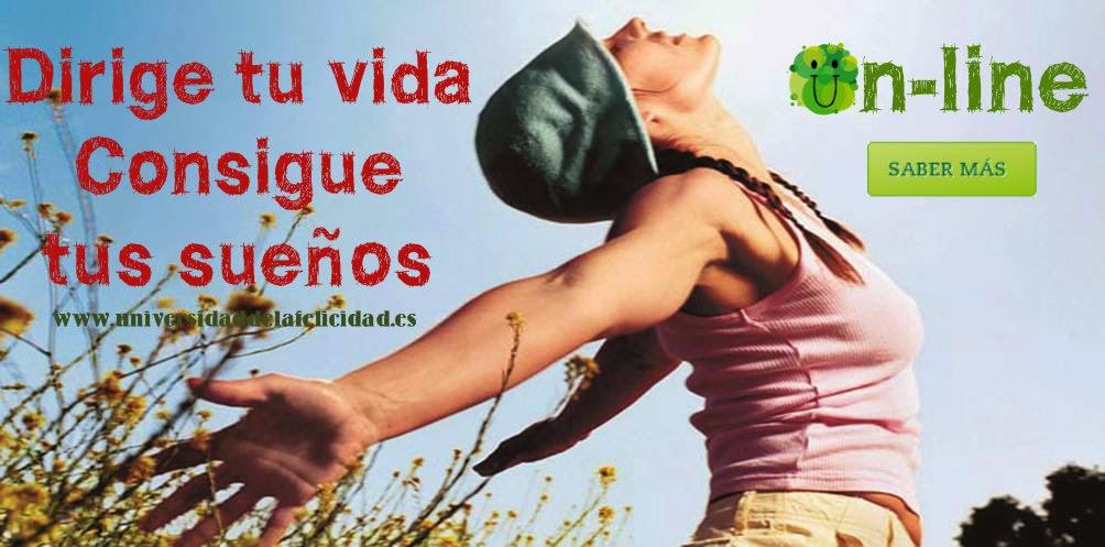 Dirige tu vida, consigue tus sueños