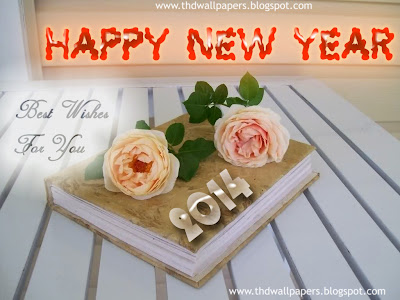 Beautiful Happy New Year 2014 Greeting Cards