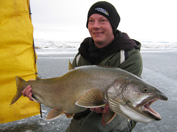 24 lb Flaming Gorge Lake Trout