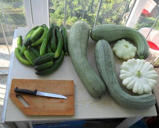 22.07. Пришла пора резать овощи для заморозки.