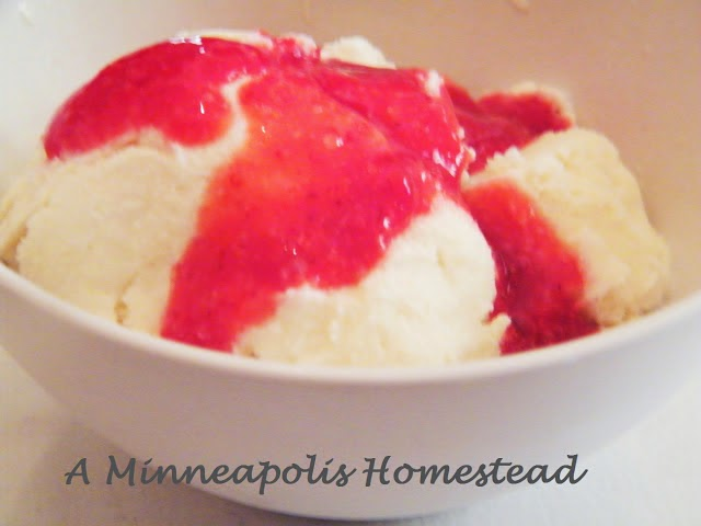 Low Sugar Ice Cream and Strawberry Syrup