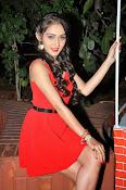 Tanya Sharma glam pics-thumbnail-8