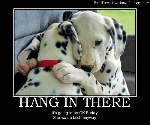 Hang in There Puppy wallpaper 1080p