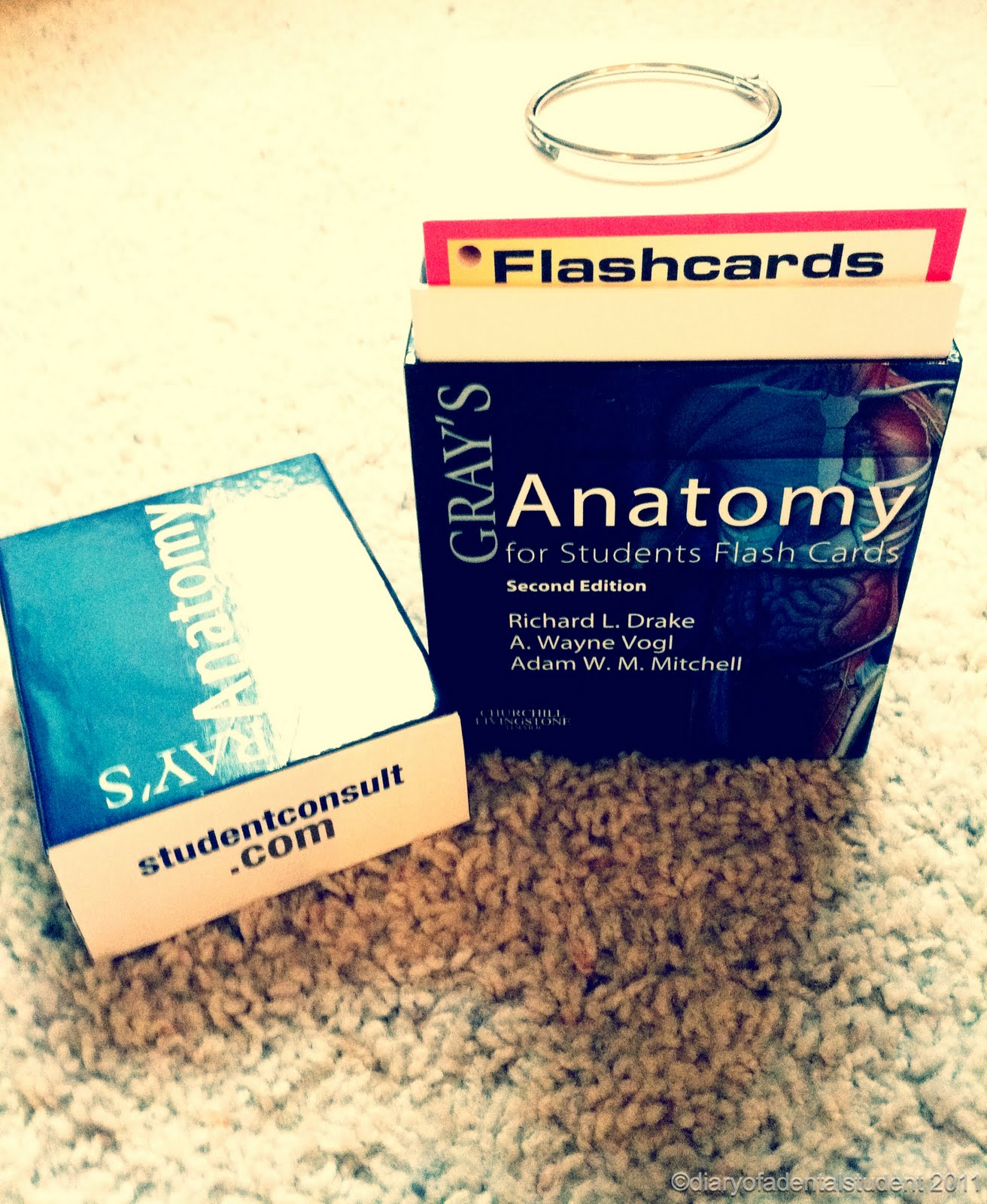 diary of a dental student: Study Aids?!