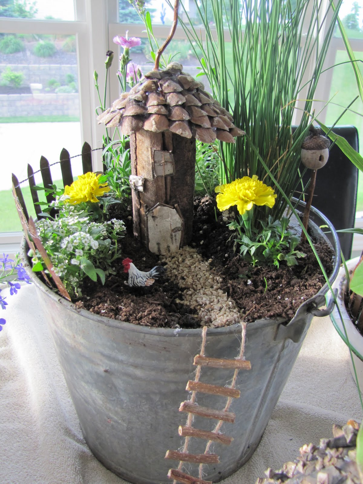 Fancilicious fairylands new fairy gardens for Olive garden cape girardeau missouri