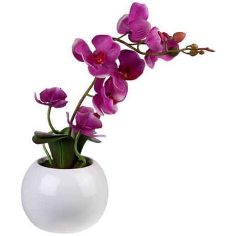Surmayi Flowers That Stay Fresh The Longest