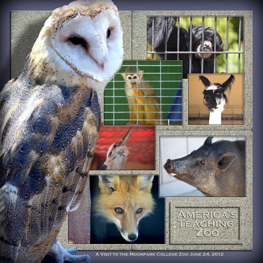 moorpark college zoo