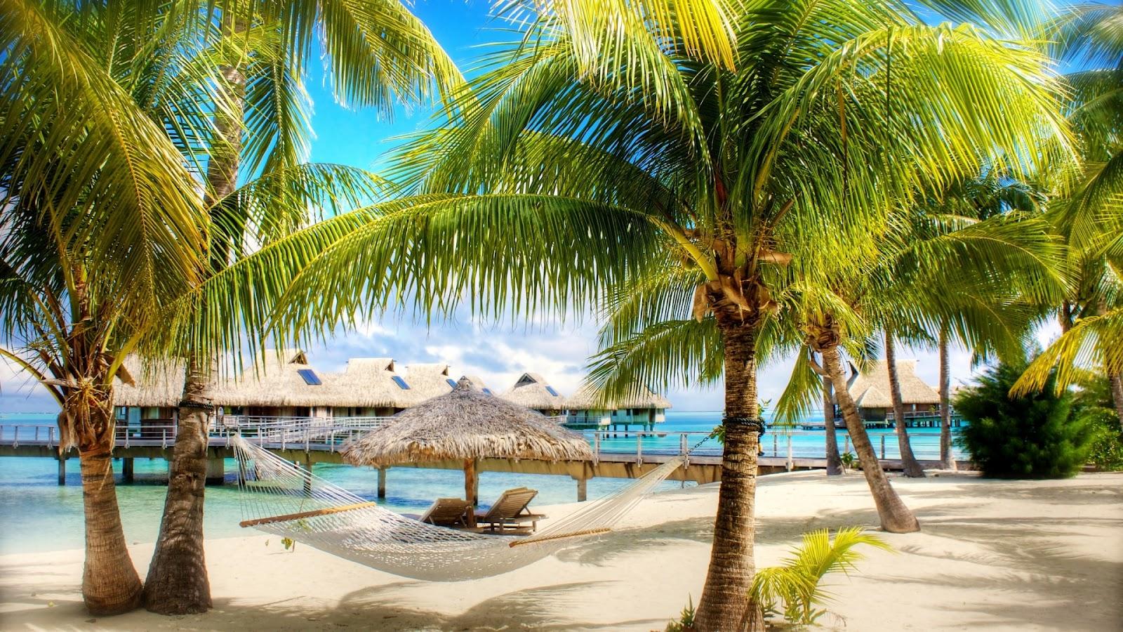 Exotic Vacation  Full HD Desktop Wallpapers 1080p