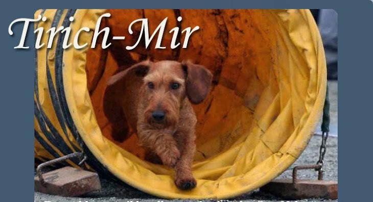 Tirich-Mir