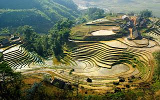 Sapa Vietnã