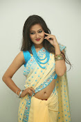 Nilofer sizzling saree photos-thumbnail-6