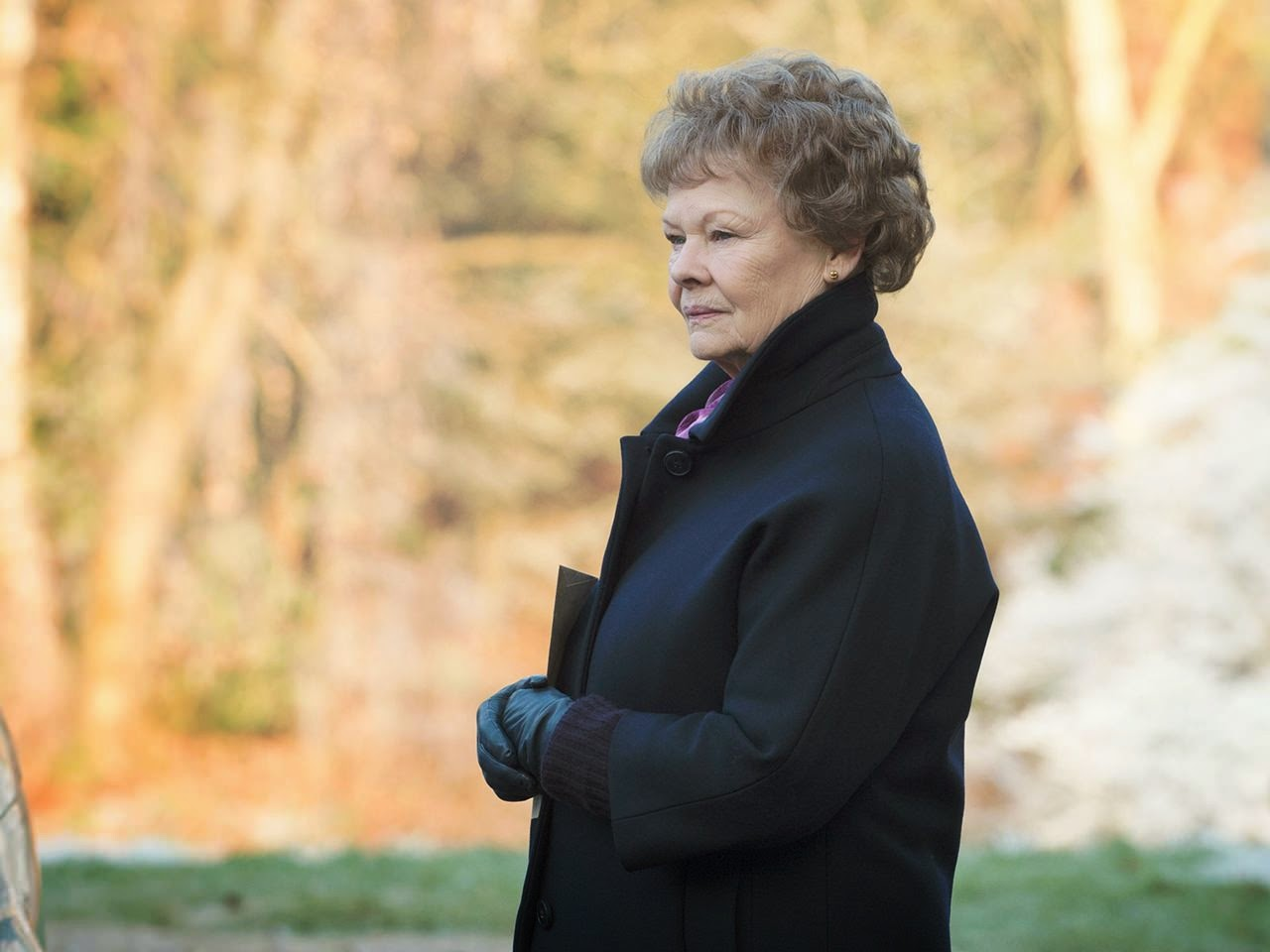 philomena lee judi dench