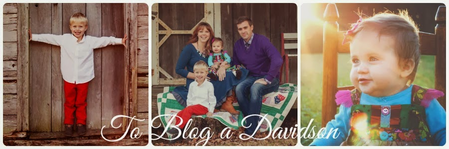 To Blog a Davidson