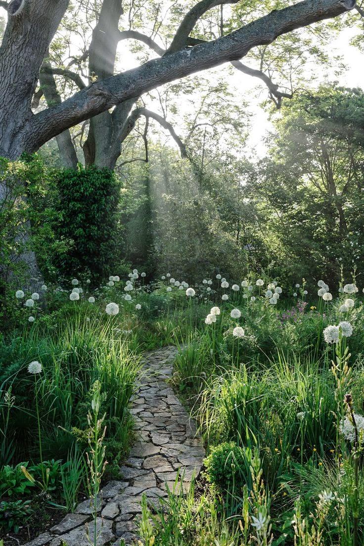 Home garden 40 inspirations pour un jardin anglais for Jardin anglais caracteristiques