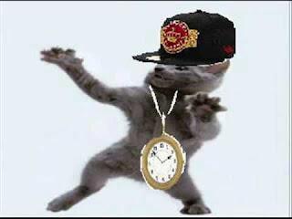 funny cat picture cat crazy dancing rapper