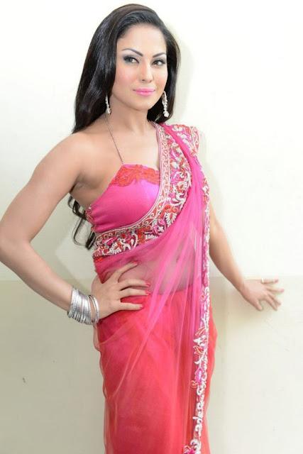 Veena Malik Hot Cleavage Show Pics